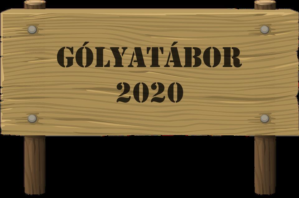 Gólyatábor 2020